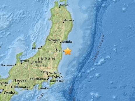землетрус фокусіма