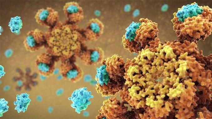 У Росії успішно випробували ліки від усіх видів раку
