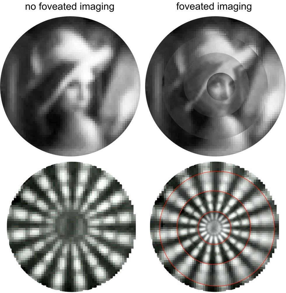 Створена камера, здатна забезпечити безпілотні апарати гострим зором