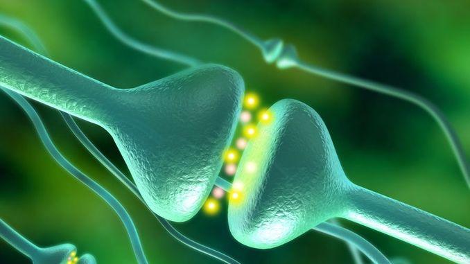 Штучні синапси