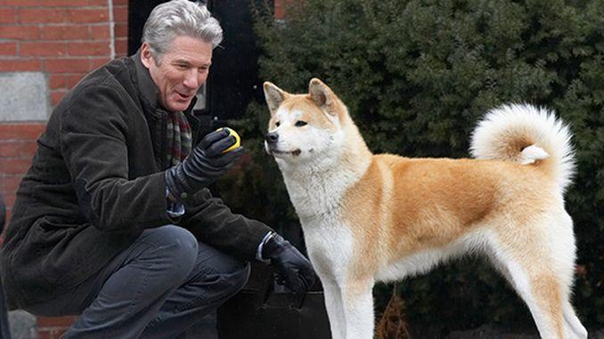 найкращий фільм про собаку