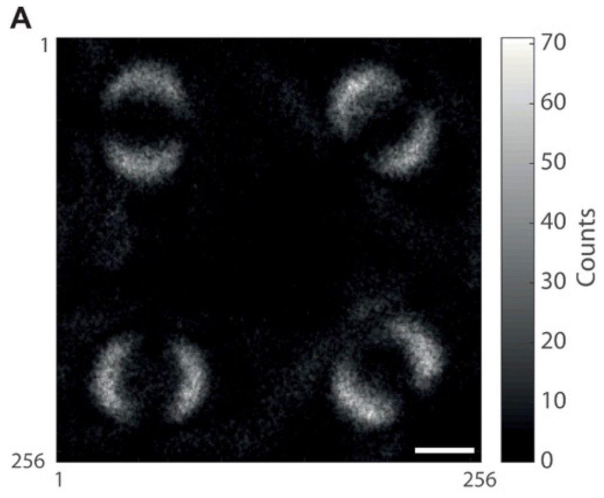 Опубліковано перший в історії знімок квантової заплутаності