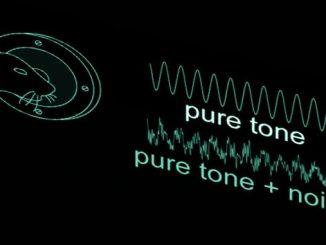 Білий шум і оптогенетика
